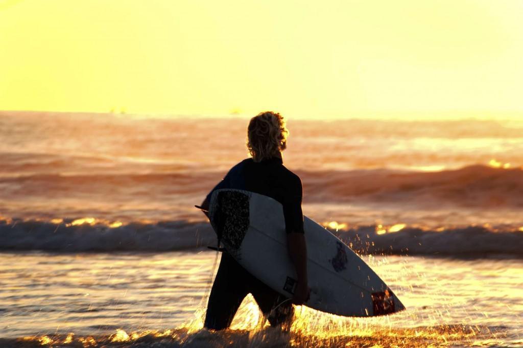 surffari